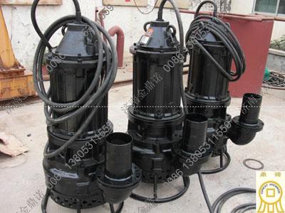 云南昆明经销商订购潜水泥浆泵NSQ25-40-15一台