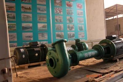 福建客户订购的立式泥沙泵