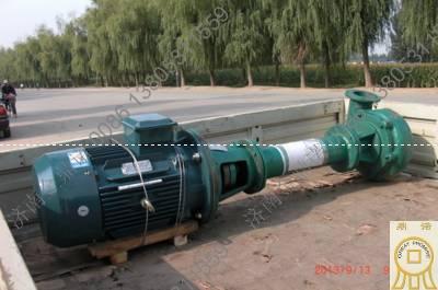 广东客户选择金鼎诺耐磨立式抽沙泵