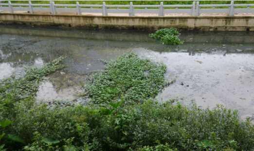 [广东]河道清淤8寸立式泥浆泵,砂泵厂家直供